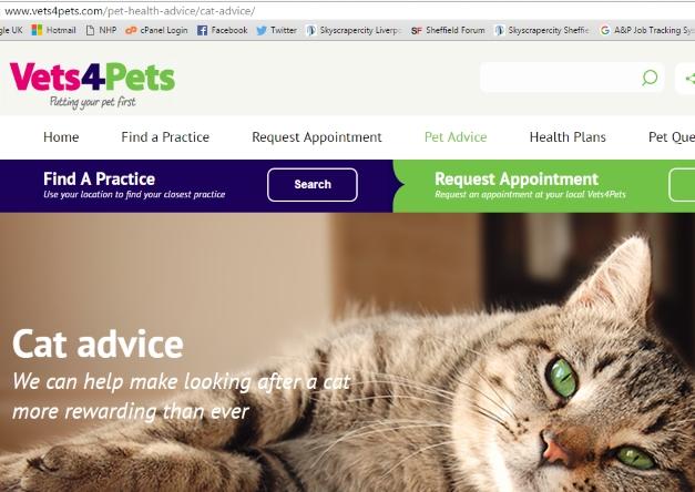 Vets4Pets website screen